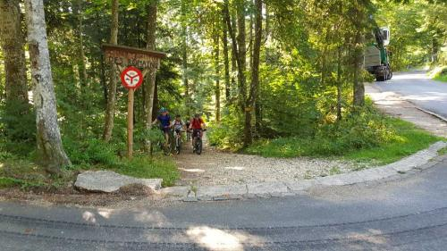 Chemin Forestier des Romains